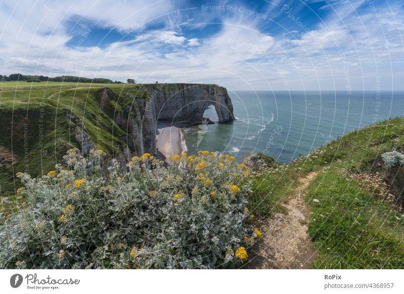 Cliffs near Etretat. Normandie canal coast steep coast Ocean rock Stone Sea State Beach beach sea France North Sea ocean Sandy beach vacation coastal migration