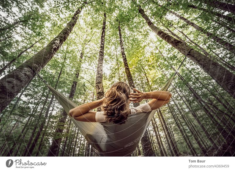 just hang out... Woman Hammock Tree Forest Worm's-eye view Relaxation Nature Lifestyle Summer youthful Camping Resting Day Exterior shot Comfortable pretty