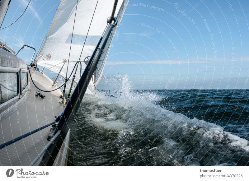 Sailboat going fast Water Sailing Watercraft Ocean Vacation & Travel Exterior shot Summer Adventure Sky Wind Horizon Freedom Baltic Sea Speed Beautiful weather