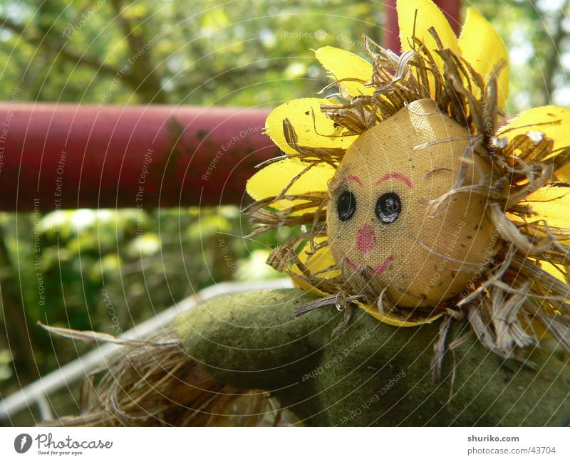 [::chuchelo:::] 4 Yellow Green Autumn Garden plot Summer Summer vacation Straw Vacation & Travel Living or residing 4u4elo Old Work and employment cucello