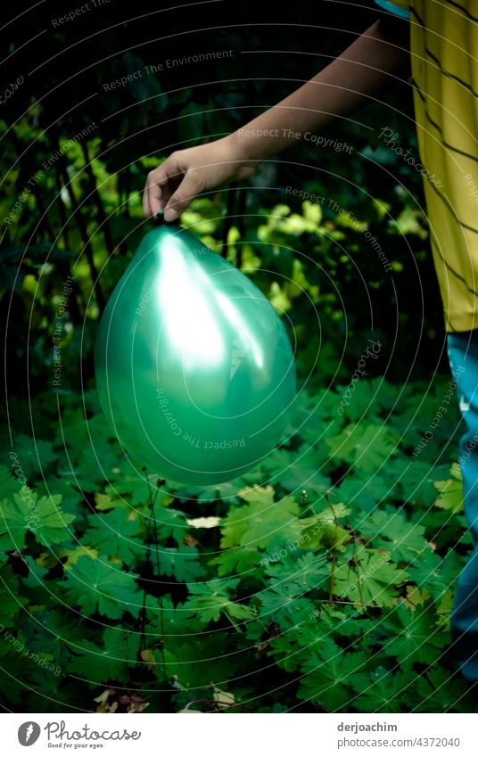 Balloon games in the garden. A child's hand holding a green balloon, halfway up in daylight. balloons Colour Happy Joy Happiness Multicoloured