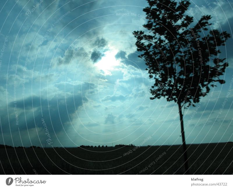 Tree Sun Blue Vacation & Travel Calm Clouds Colour Movement Landscape Moody Trip Might Driving Celestial bodies and the universe Apocalyptic sentiment
