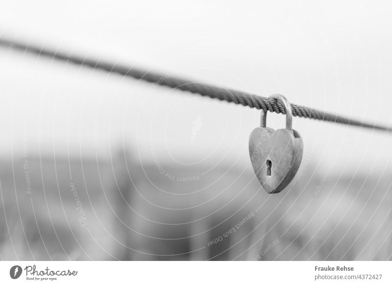 Heart shaped love lock by the sea Love Locks Love padlock Padlock Wire cable grasses dunes In love everlasting love heart-shaped Keyhole definitively