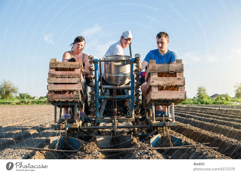 Farmer workers on a tractor plant potato seeds. Automation of process of planting potatoes seeds. High efficiency and speed. Agroindustry and agribusiness. New technological solutions to simplify work