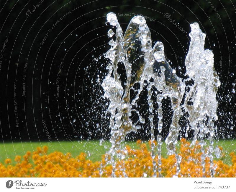Summer Well Refreshment Fountain