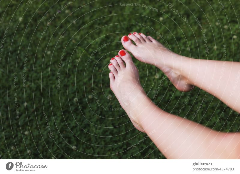 Close up of female feet with red painted toenails sunbathing Feet up Toenail Detail sunbathe sunshine sexy pretty Adults 18 - 30 years Young woman Sunbathing