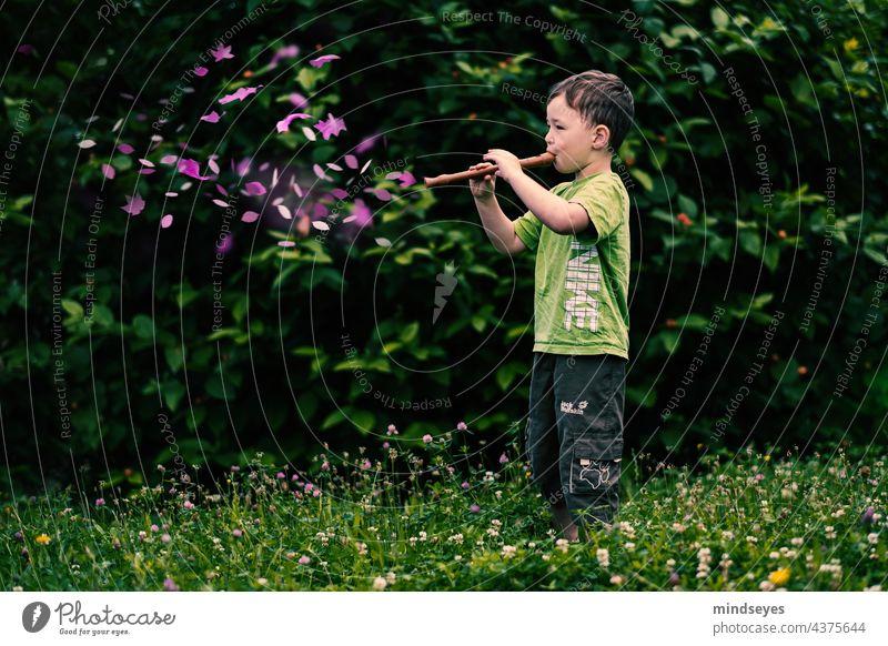 Boy plays magic flute Flute Music sound Green Garden Noises Magic enchanting Make music Leisure and hobbies Boy (child) Infancy fantasy Dream Musical instrument