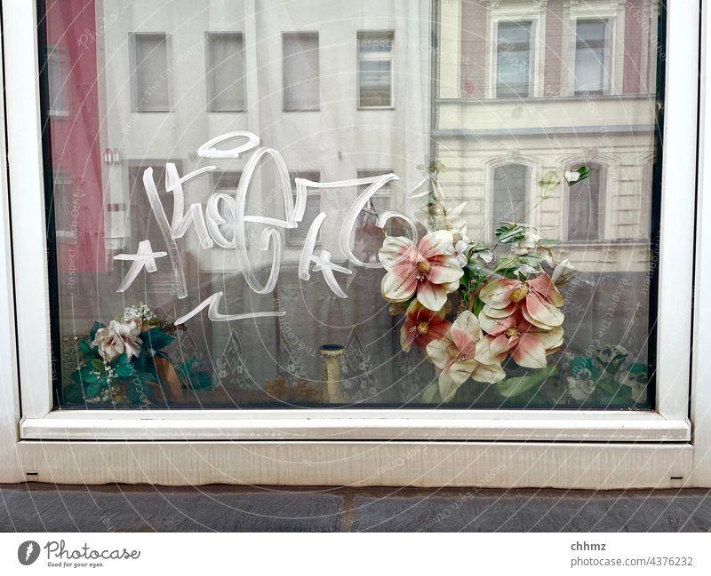 Perspectives Window Glass Reflection Bouquet Plastic Facades Graffiti Window frame windowsill dilapidated polluted Old sad Insight Vista