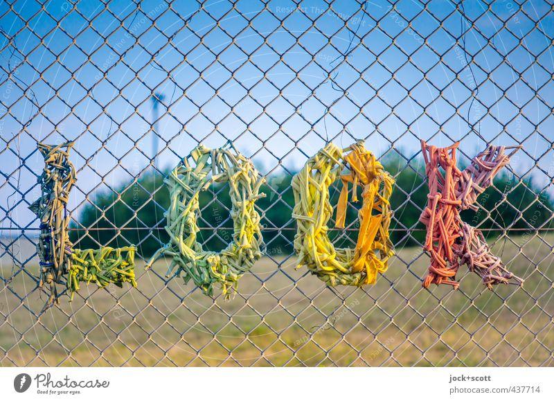 KOOL Colour Summer Warmth Style Line Art Park Elegant Creativity Beautiful weather Joie de vivre (Vitality) Cool (slang) Cloudless sky Hip & trendy Word