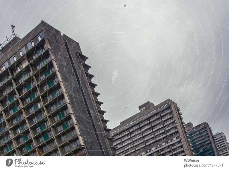 These prefabricated slab buildings were a showcase housing project of the GDR, now they are abandoned ruins skyscrapers High-rise House (Residential Structure)