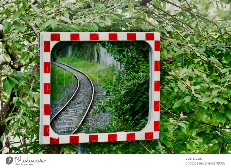 Tracks in the mirror, around it a lot of green rails Railroad Commuter trains Railroad tracks foliage Green red white Rail transport Track bed Train travel