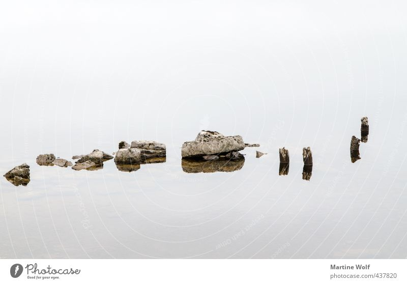 of sticks and little stones Nature Lake Stone Wood Calm Serene Great Britain Scotland Stick Reflection Water Black & white photo Exterior shot Detail Abstract
