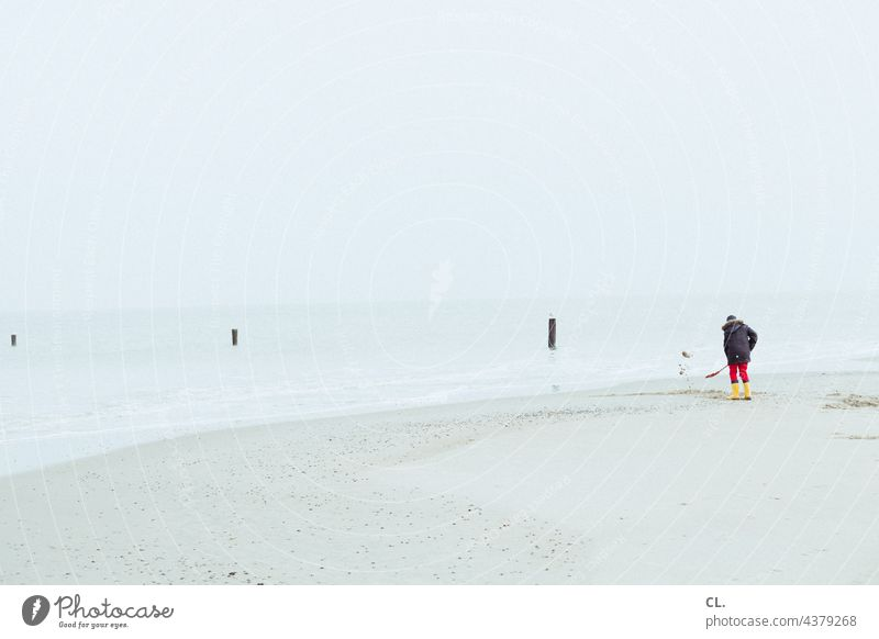 On the beach Beach Sand Island Ocean Shovel Water coast Far-off places Sky Horizon tranquillity wide Loneliness on one's own Sisyphus Vacation & Travel