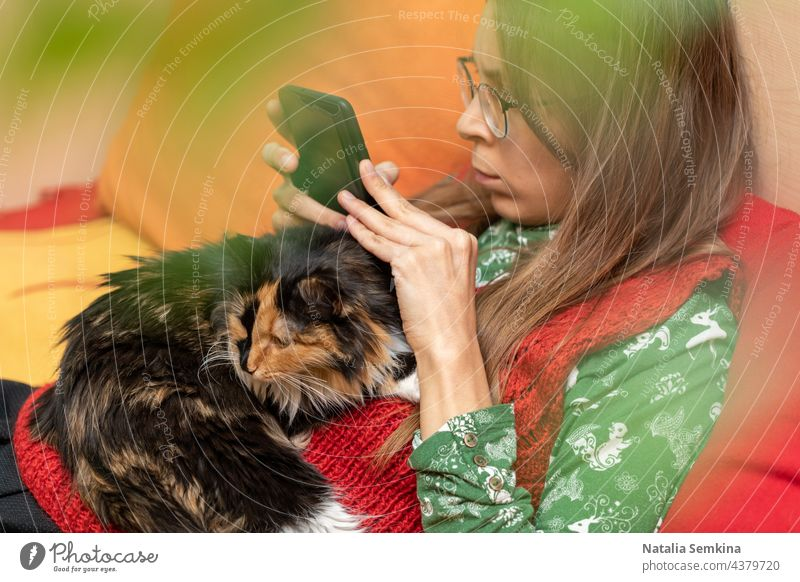 Young girl is sitting at home on couch with cat lying on her and with smartphone in her hands. young girl close up pet domestic animal online communication