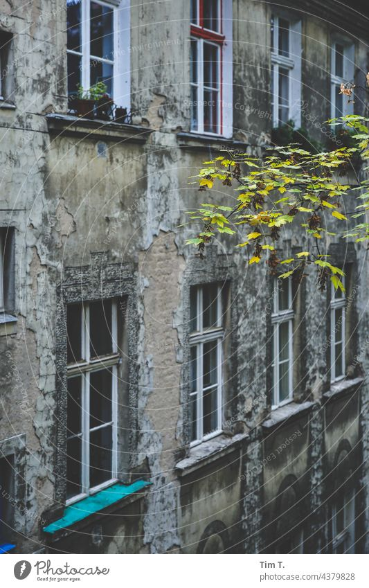 an old backyard in Friedrichshain Backyard Berlin Colour photo Deserted Town Capital city Downtown Exterior shot Old town Window Manmade structures Building Day