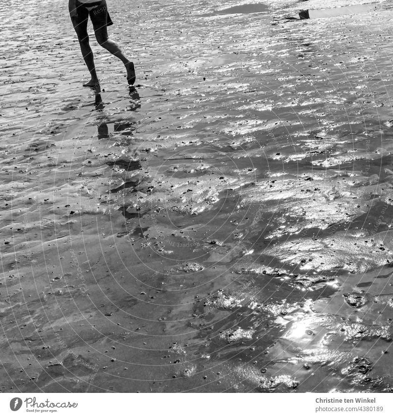 Walk alone, legs reflected in the mudflats, wet sun shine mudflat hiking tour watt Woman Walking To go for a walk Beautiful weather Summer Water reflection