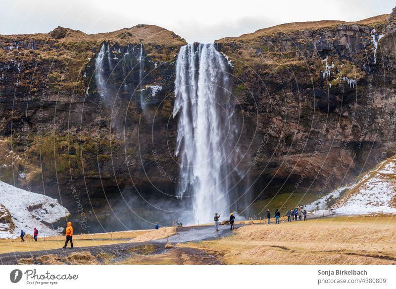 Seljalandsfoss - Iceland's waterfalls in winter Seljaland's Fossus Waterfall Icelandic Winter hydropower Landscape Nature Massive Attraction Tourism tourism