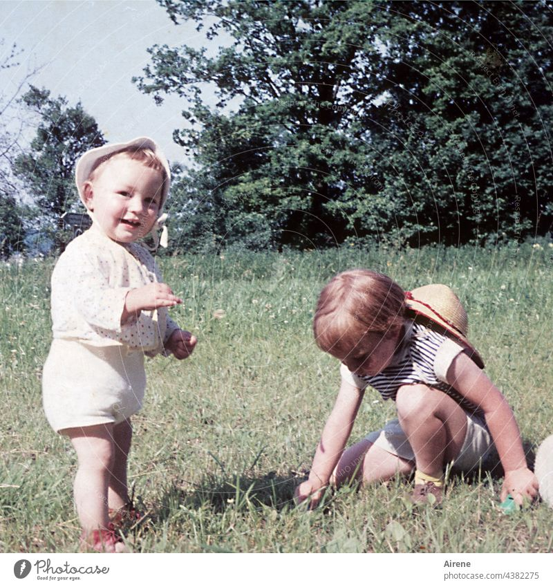pick flowers children Retro '60s Toddler Baby Meadow Laughter Joy Nature love for nature old photo Analog Summer untroubled Infancy Happy Child Happiness Cute