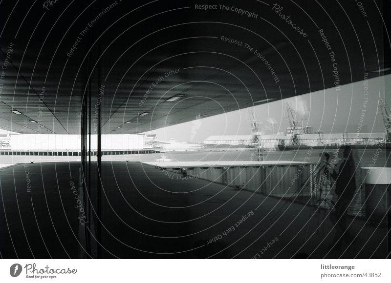 involuntary mirroring Reflection Photographer Architecture Black & white photo Modern Harbour