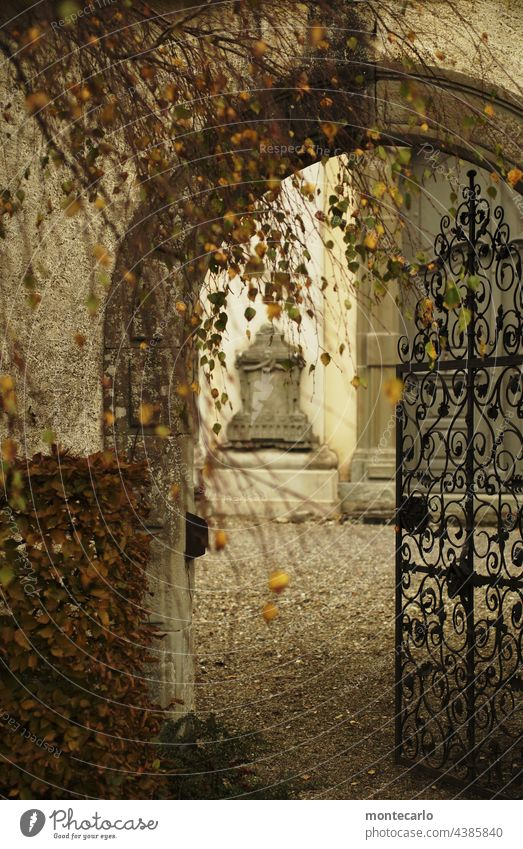 The door is open | Entrance to the courtyard of a church Church Autumn Historic Old Wrought iron Interior courtyard autumn mood Passage thrilling Archway