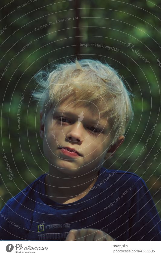 Portrait of a blond boy with tousled hair outdoors on the background of a summer green forest. blonde child portrait nature sunny beauty face summertime