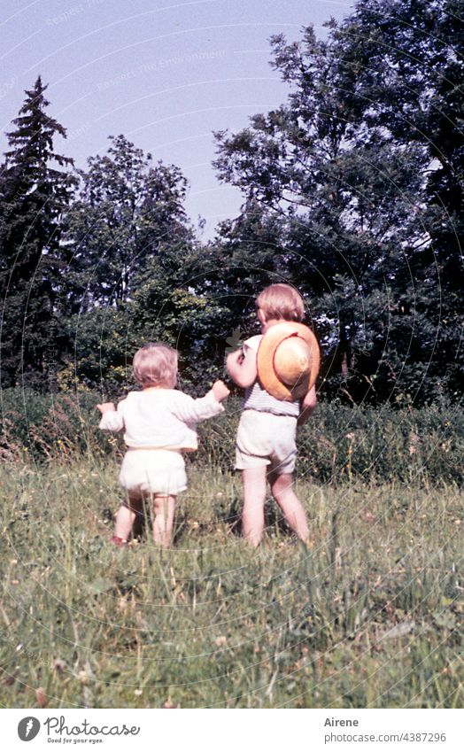Big sister, take me with you! children Retro '60s Toddler Baby Meadow Joy Nature old photo Analog Summer untroubled Infancy Happy Happiness Child Cute Park Girl
