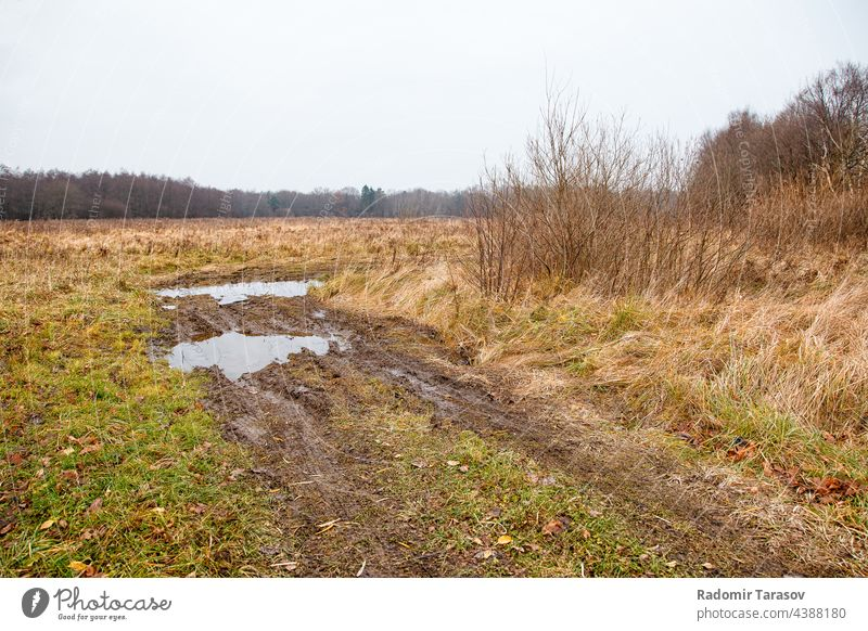 broken dirt road in the field land ground rough background environment nature texture track mud earth plant brown soil travel landscape empty grass dry way
