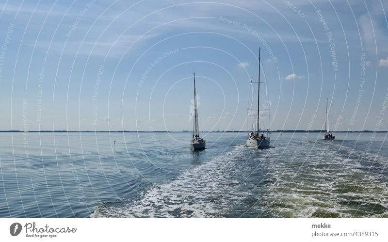 Slipstream sailing on the Baltic Sea Sailboat Sailing Sailing ship Sailing trip Ocean Water Summer Waterway Aquatics Waves Calm Lake Ferry Leeches