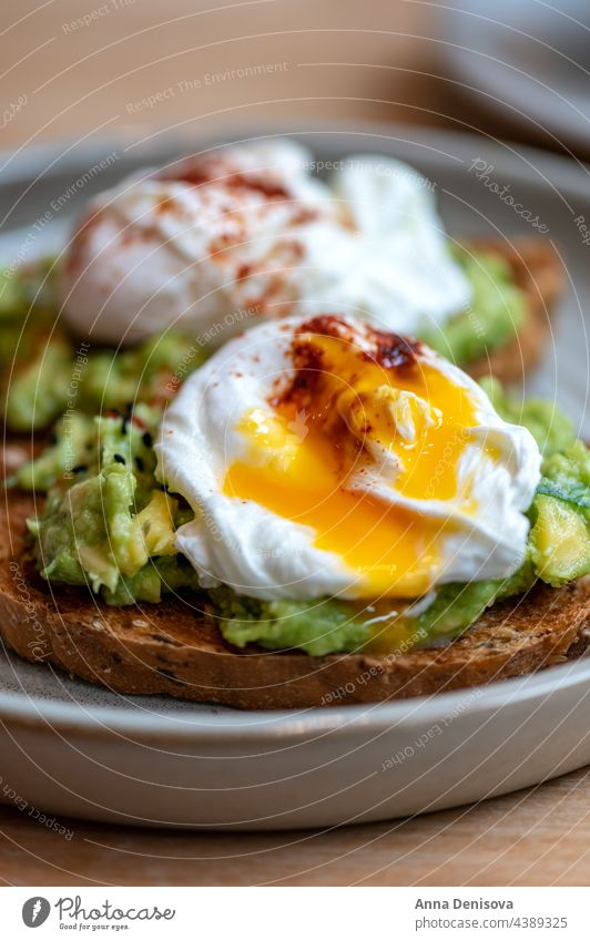 Toast and Poached Eggs egg toast avocado vegetarian healthy poached food yolk sandwich breakfast bread delicious poached egg on toast tasty cooked benedict
