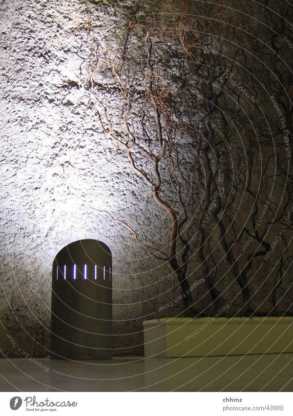 Wall (building) Wall (barrier) Lighting Concrete Branch Paris Connection Underground Obscure Plaster London Underground Subsoil