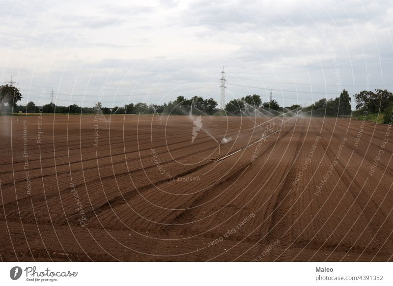 Irrigation of a vegetable field - Rhineland-Palatinate, Germany. agriculture agronomy automated country countryside crop cultivated drop environment equipment