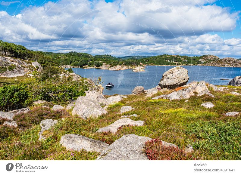 Landscape on the archipelago island Skjernøya in Norway Skjernoya Ocean coast North Sea Skagerrak boat Island archipelago garden Summer Rock stones Hiking hike