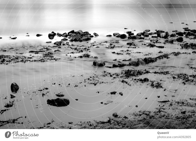 Elbe river bank with long time exposure exposure time Nature Clouds Landscape Exterior shot Environment Water Beach Black & white photo Exposure stones Ocean