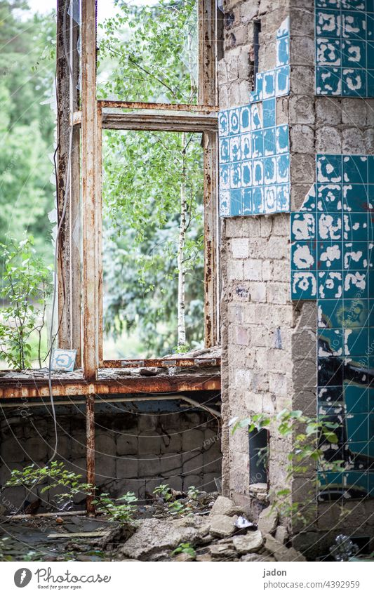 live more beautifully (3). Ruin Architecture House (Residential Structure) Window Old Decline Broken Transience Destruction Manmade structures Past Deserted