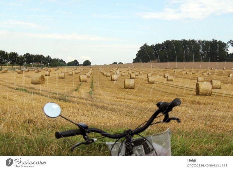 lots of rolled straw bales on a field at the edge of the cycle path Field acre Bale of straw Coil Harvest harvest season Bicycle Bicycle handlebars Agriculture