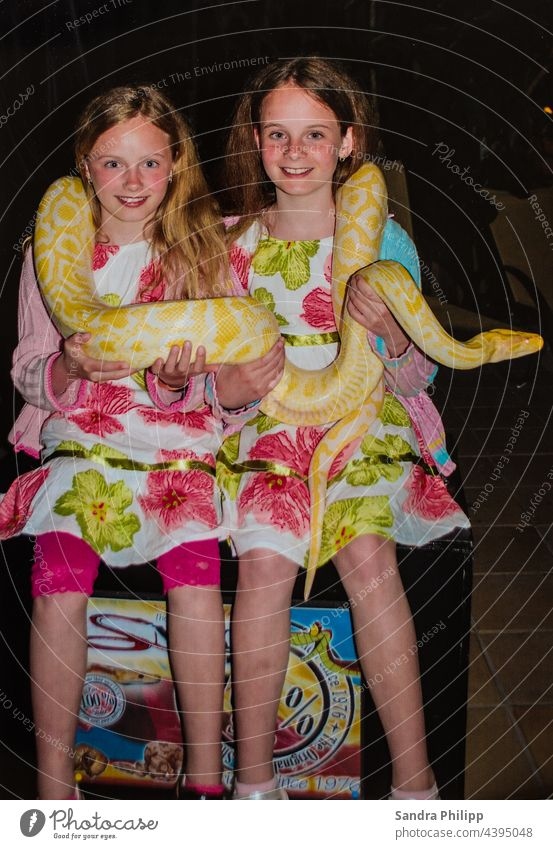 two girls hold an albino tiger python in their hands and around their neck Snake twins Girl dresses Laughter Joy Photo shoot Happiness portrait Exterior shot