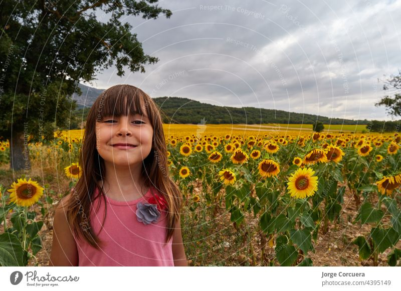 girl with funny face, looking at camera in a stunning field of sunflowers kid child happy joy people person summer sunny young beautiful beauty caucasian