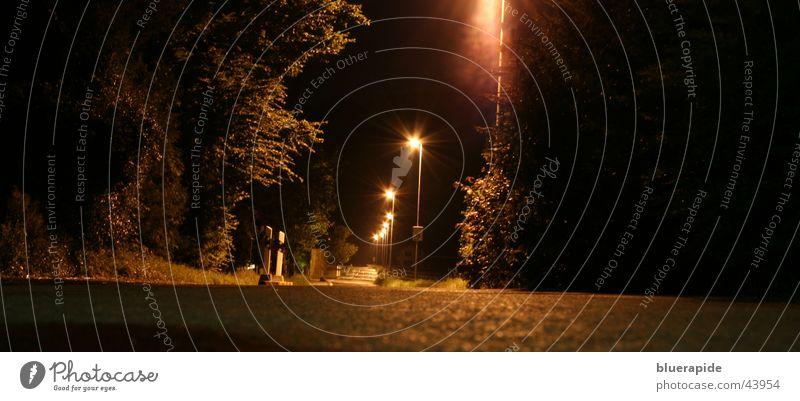 streetlife Night Dark Black Street lighting Concrete Tar Bushes Glimmer Long exposure Plant Gold Sky Lamp