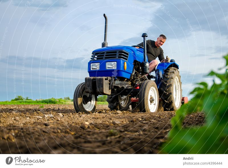 A farmer on a tractor works in the field. Milling soil, crushing and loosening ground before cutting rows. Farming, agriculture. Preparatory earthworks before planting a new crop. Land cultivation