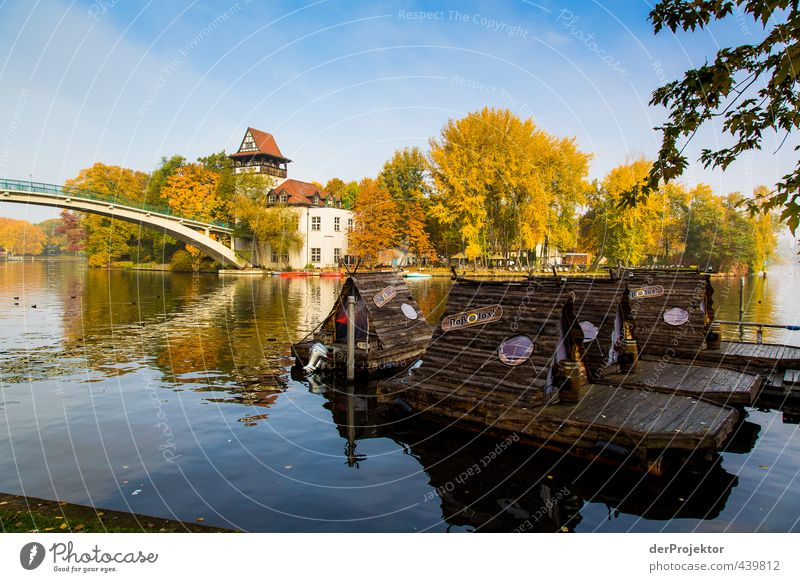 Water Tree Landscape Joy Leaf House (Residential Structure) Environment Emotions Autumn Berlin Happy Moody Park Contentment Beautiful weather Bridge