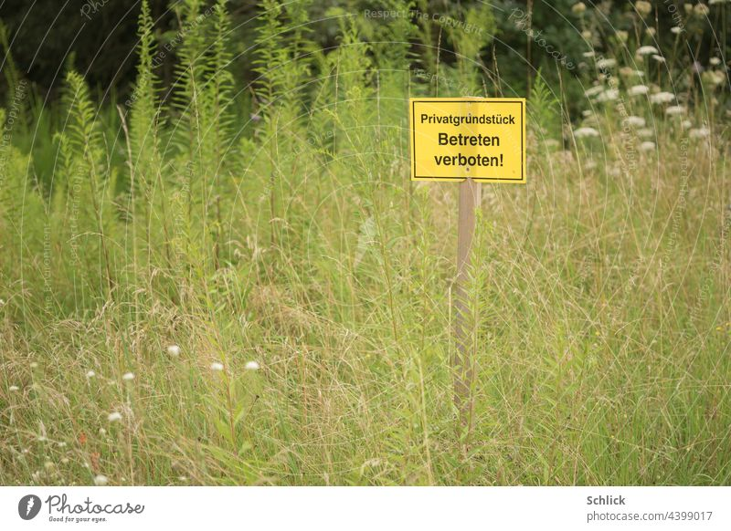 Sign no trespassing private property on a meadow with many wild flowers sign No trespassing Meadow Wild herbs Grass Tall canopyless Yellow Text writing German