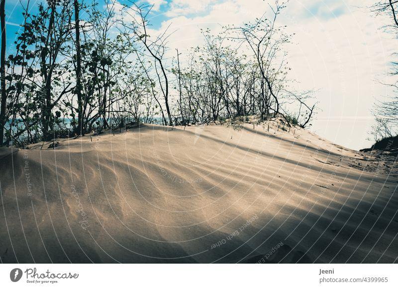 Windblown sand on the cliffs of the Baltic Sea Sand Sugarsand Fine fine sand Blow Blown away blown away by the wind steep coast Baltic coast Baltic beach Island