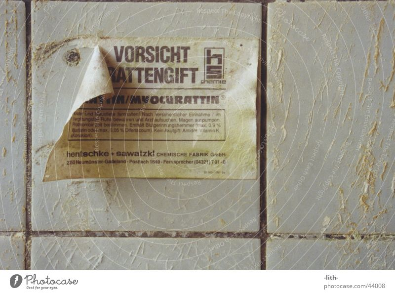 rat poison Rat Things Piece of paper Signage Russia flow Poison