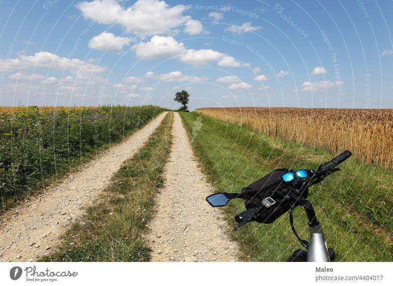 Summer Lamdscape, bike ride, sun reflects in sunglasses summer bicycle sport lifestyle reflection view road adult healthy white biker recreation rider biking