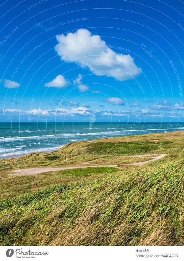 Dune and beach near Hirtshals in Denmark shepherd's check duene coast North Sea Ocean Beach Skagerrak Summer Marram grass Water Waves Nature Jutland Hjørring