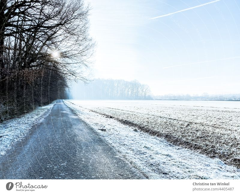 Frosty starts the day, wintry sunshine, nature asleep Winter's day morning sun chill standstill tranquillity chilly morning Cold Nature Frozen White Winter mood
