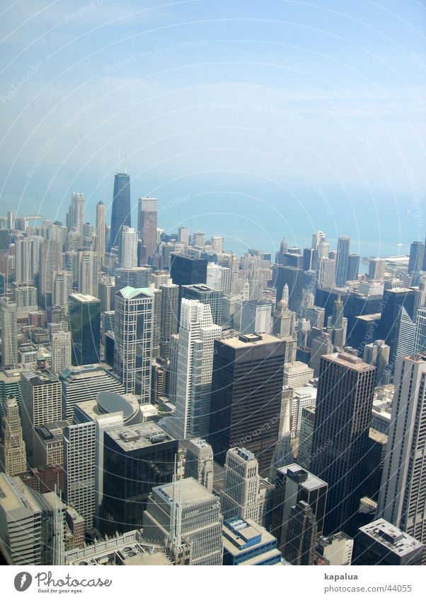 Chicago from above High-rise Sears Tower Town Architecture Sky
