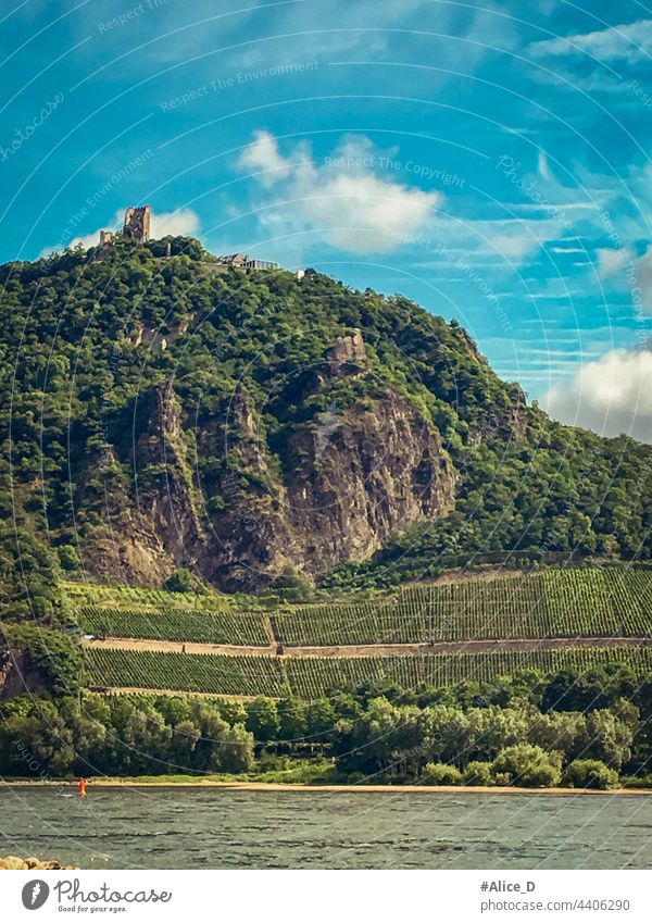 Drachenfels hilly landscape on the Rhine outdoor legend fairy tale historical germany european holiday fortress journey green clouds castle-ruin rock vacation