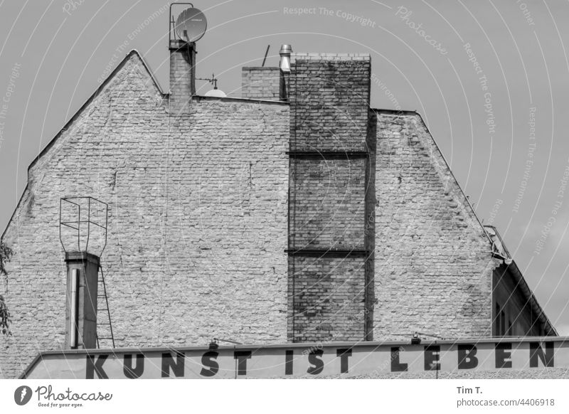 """an old facade and the saying """" art is life """" Berlin Lake Weißensee Bread Factory Exterior shot Capital city Deserted Architecture Day"""