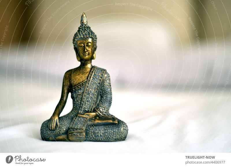 Priests and gurus. Buddha - does he know more? The quiet smile... Buddha statue Buddha figure Buddhism Meditation Asia Religion and faith Culture Yoga Zen